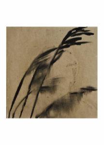 Sara Zahorjanová - Dážď, akryl a tuš na plátně