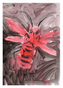 Andrej Dúbravský - Červený čmeliačik, akvarel na papieri, 20 x 35 cm